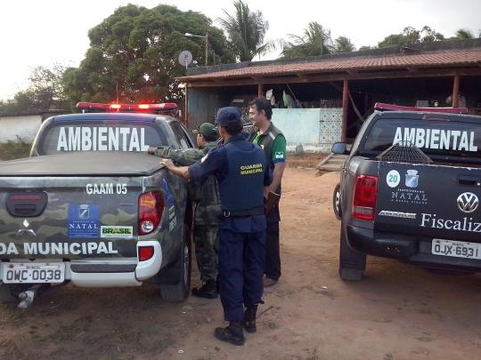 Fiscais e Guardas Municipais Ambientais em ação para captura de macaco prego na ZPA 04