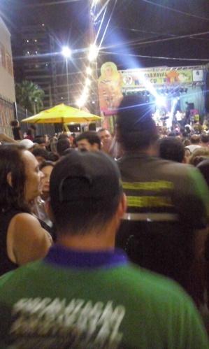 Carnaval 2015 - Fiscaização Ambiental do Natal
