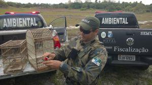 Fiscais e Guardas Municipais devolvem animais a natureza