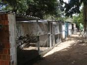 Fiscalização Ambiental Integrada - SEMURB - IBAMA - DEPREMA - 06