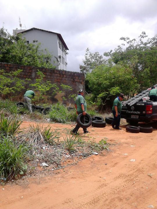 Fiscais Ambientai de Natal retiram pneus de vazio urbano e ajuda no combare ao dengue